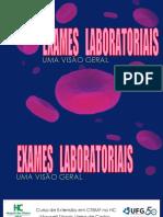 Exameslaboratoriais Umavisogeral Maxwellcastro 120102213604 Phpapp02