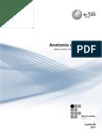3a Disciplina - Anatomia e Fisiologia