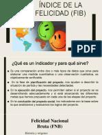 FIB.pptx