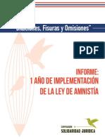 INFORME AMNISTÍA-1