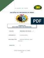 DIPS EN ESPAÑOL_JAP.doc
