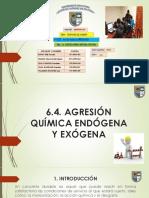 6.4.-Agresión-Químca.pptx