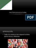 Factor Sociocultural