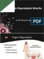 7. Sistem Reproduksi Wanita