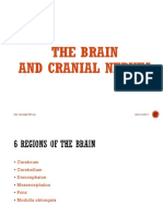 Brain and CNS A2W