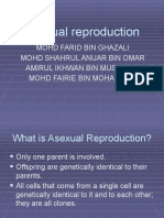 Asexual Reproduction 1