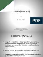 Anatomi Nasus
