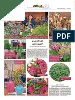 PZ Pforzheim vom 04.03.2017 Seite 38.pdf
