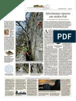 PZ Pforzheim vom 11.02.2017 Seite 38.pdf