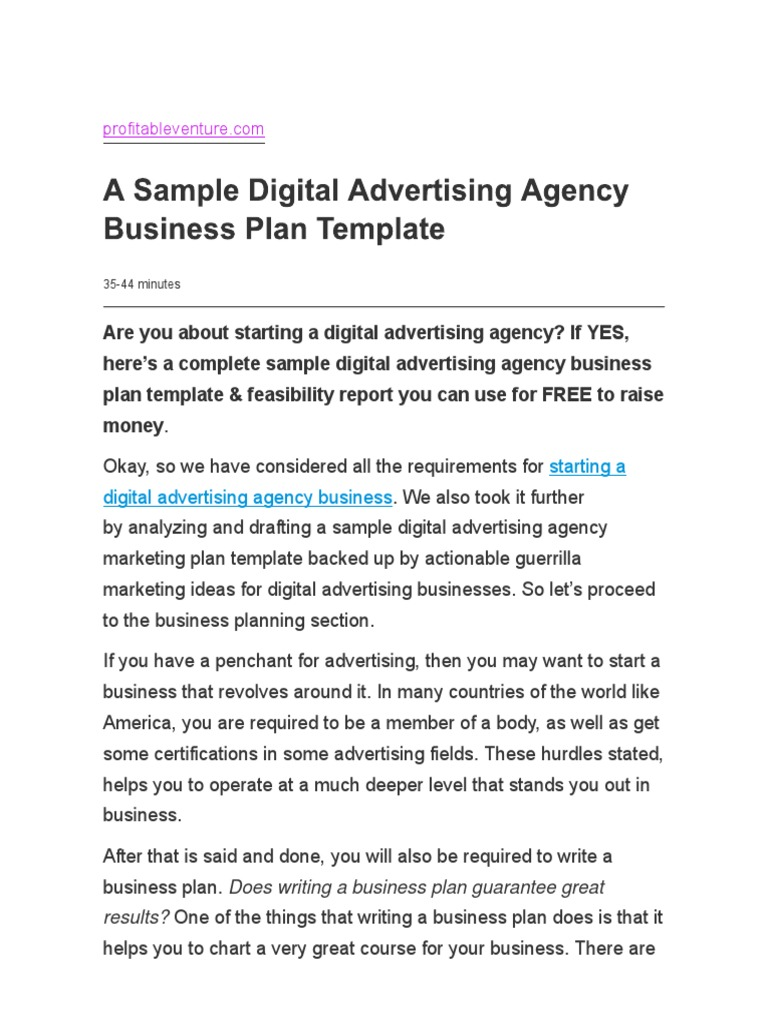 A Sample Digital Advertising Agency Business Plan Templatepdf - Example business plan template