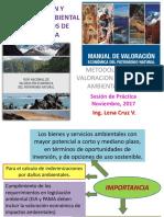 METODOLOGIAS DE VALORACION ECONOMICA AMBIENTAL EN EIA