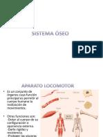 Sistema Oseo - Basico.ppt