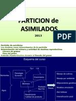 Clase3_Particion_2013