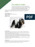 Informacion Sobre El Perro