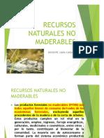 Recursos Naturales No Maderables_pdf