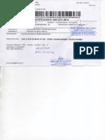 1 JUZGADO MIXTO515.pdf