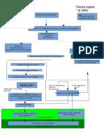 Flow Sheet Reproducción Vegetal Microbiología