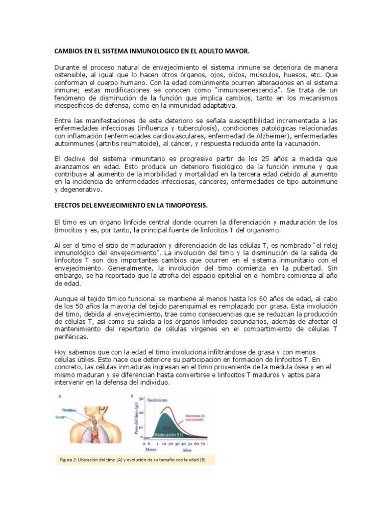 Moderno Anatomía Y Fisiología 1 Hoja De Trabajo Para Los Tipos De ...