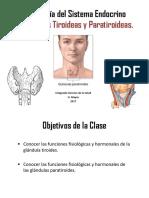 Sistema Endocrino II Tiroides y Paratiroides