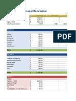 Weekly Budget Planner ES