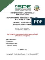 informe germinación y emergencia.docx