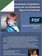 Conducta Agresiva IInfantil (1)