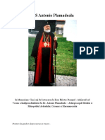 IPS Antonie Plamadeala