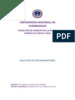 202175573 Cuestionario de Neuroanatomia Docx