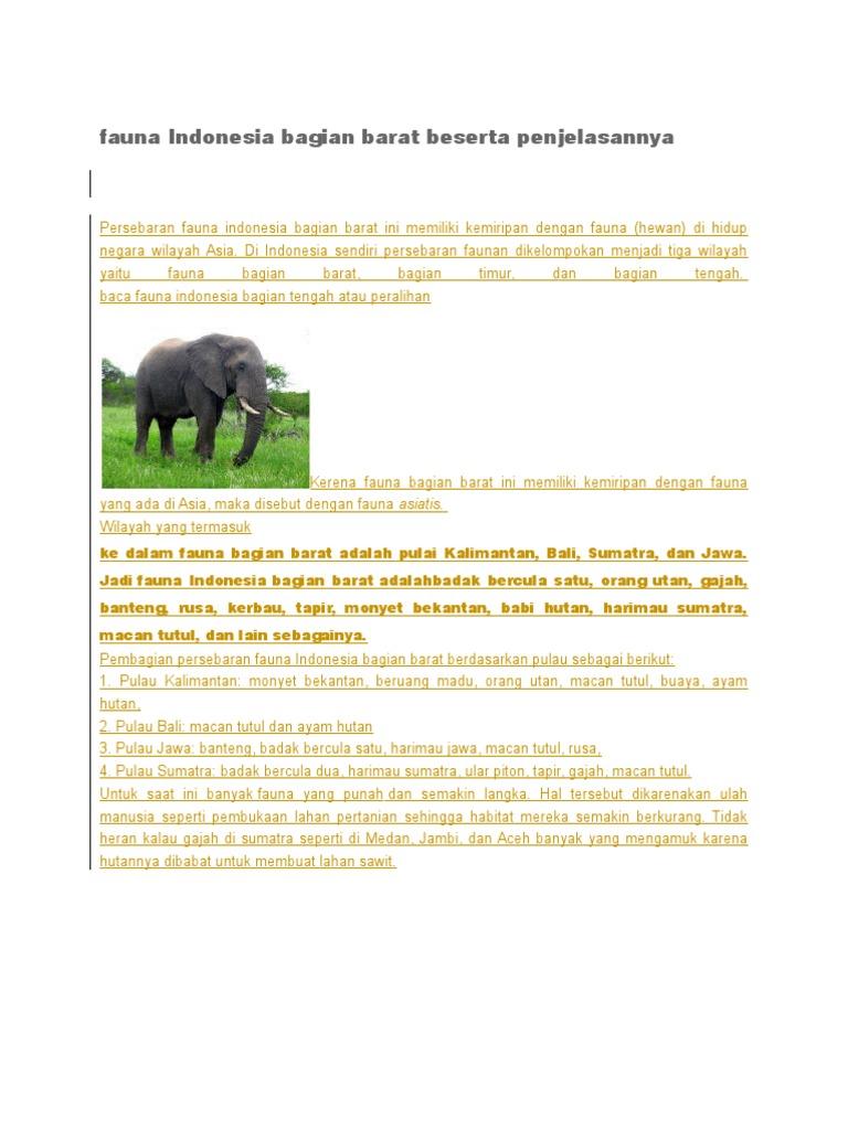 Kumpulan Koleksi Gambar Fauna Indonesia Bagian Tengah Beserta Penjelasannya HD