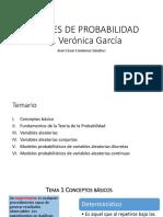 Apuntes Ing. Verónica García