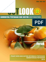 Outlook Jeruk 2016