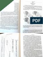 Geokniga Geologiya Azerbaydzhana Tom 2 Litologiya