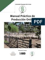 SUL Manual Practico de Produccion Ovina