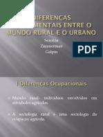 Diferenças Fundamentais Entre o Mundo Rural e o