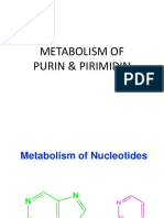 Metabolism of Purin Pirimidin