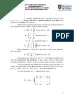 Matemática 04 NA Matrizes