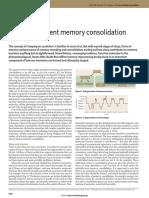 Sleep-Dependent Memory Consolidation
