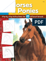 Learn to Draw Horses Ponies