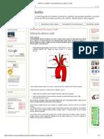 Sistema Circulatorio_ Vascularización de Cabeza y Cuello