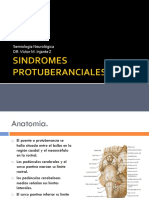 SINDROMES  PROTUBERANCIAL