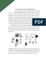 Makalah Kelompok Material Sintesik Dan Alam Baru (1)