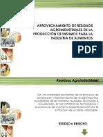 Aprovechamiento de Desechos Agroindustriales