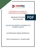 OscarRodriguez_31121727_Tarea-06_Eficiencia Tecnica y Economica.pdf