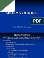 Kp 1.2.2.4 - Anatomi Sistem Saraf Pusat 3
