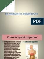 aparatodigestivopowerpoint-120203081715-phpapp01