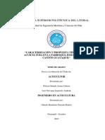 Grupo 01 - Zona Puna - Tesis V5.2Definitiva (1).docx