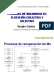 283832673-Molibdeno-Presentacion.pdf