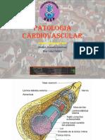 11 Pato Cardiovascular