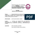 Practica Pre Profesional i - II Cirna-gober