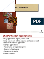 Unit 4 Dna Puri Fica It on Lecture